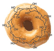 Cyclodextrin - the molecule with a hole (illustration by David Bradley)