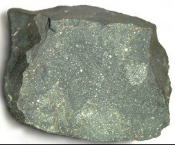 A fragment of the Murchison meteorite was analysed by the IC team