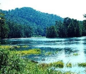 South Fork Shenandoah River (Credit: Virginia.gov)